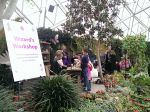 Guests visit the Wizard's Workshop at The Domes' Very Fairy Princess day